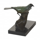 Bronze Tui